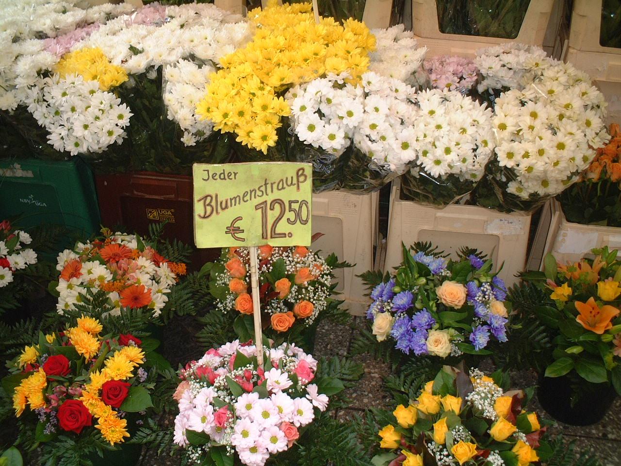 > 欧洲花之印象