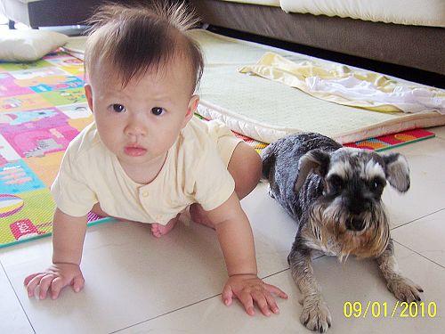 给小孩子养小动物的乐趣