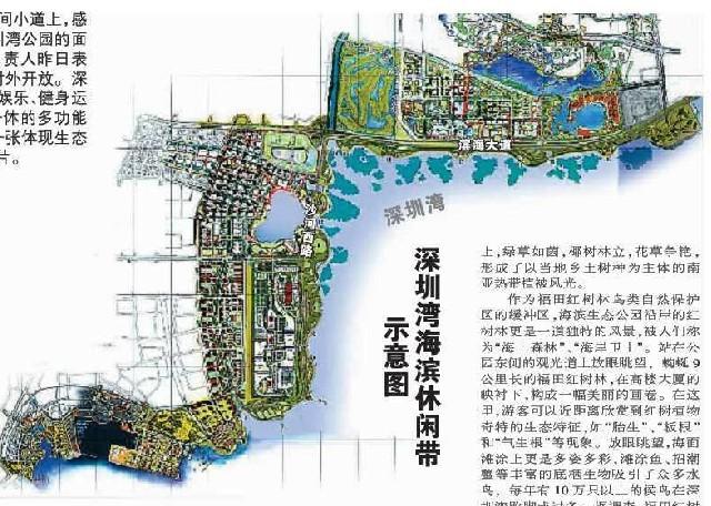 深圳湾公园在大运会前对外开放啦