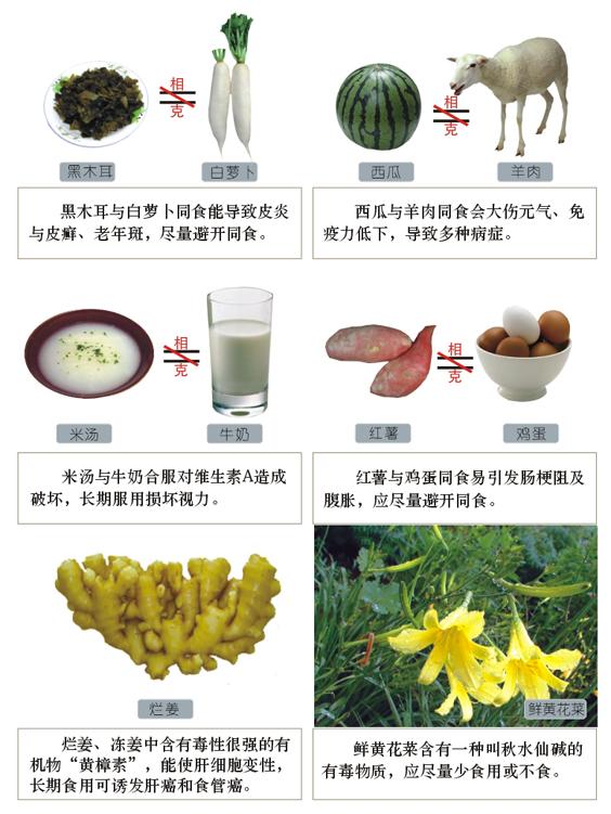 食物相生相克图表图片