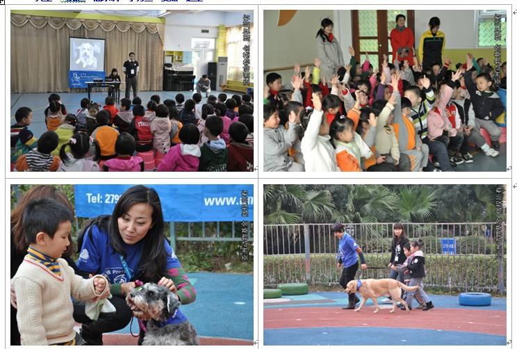 亚洲动物基金深圳志愿者通讯(2011年1月)