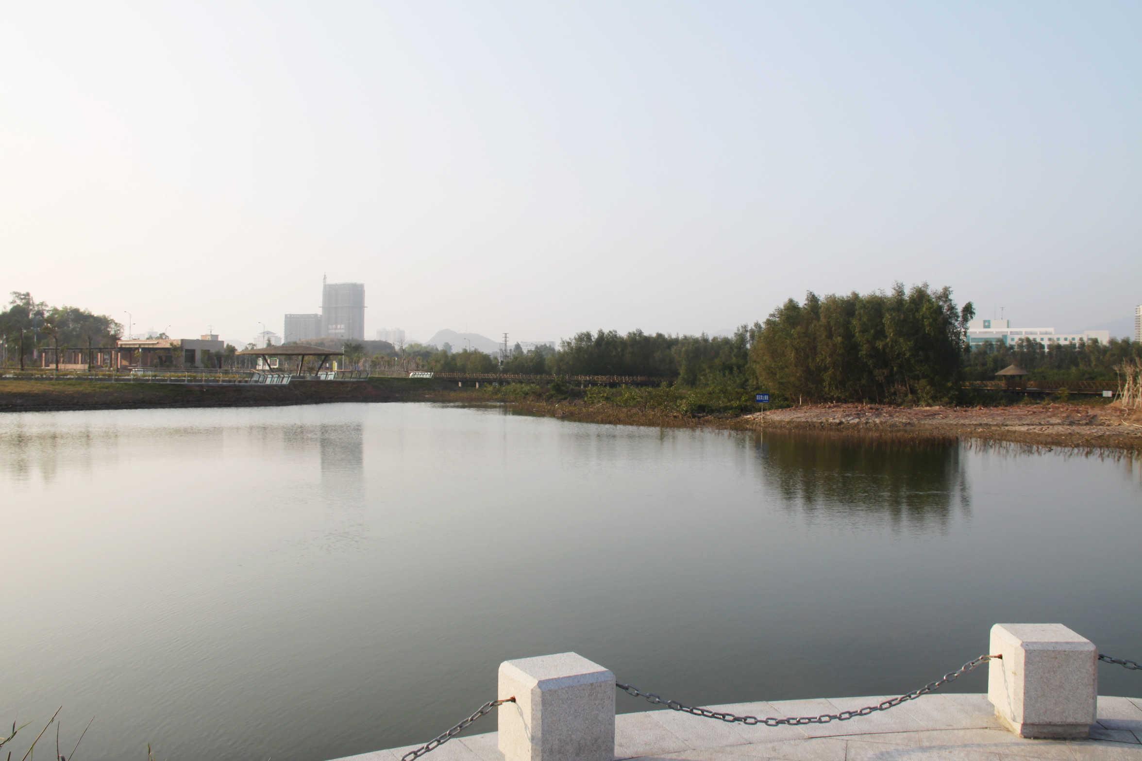 大亚湾红树林公园
