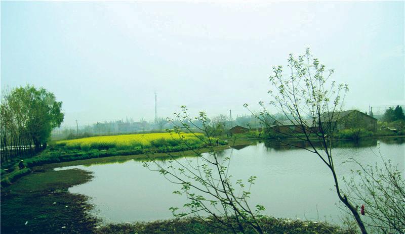 唯美意境风景春