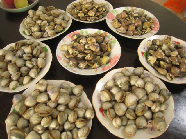 我们吃的贝类的海鲜都有些什么名?