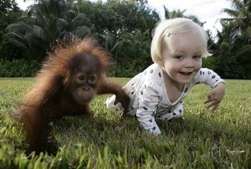 超萌的小孩与动物合影