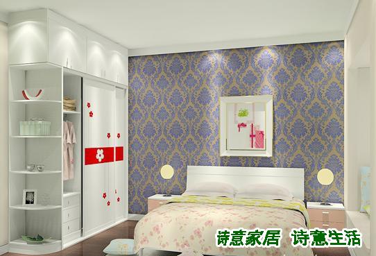 专业定制衣柜/衣帽间/卧室全套板式家具
