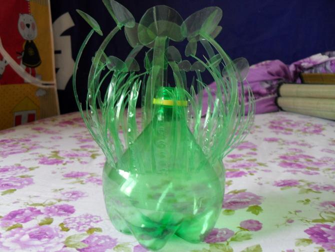 雪碧瓶变废为宝---水草插花瓶